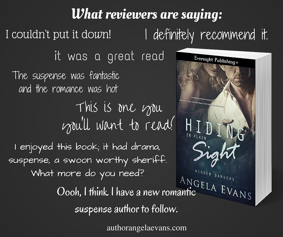 What reviewers are saying about Hiding In Plain Sight